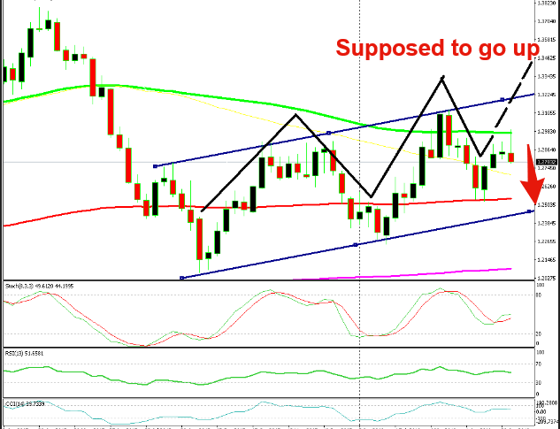 According to the trend, USD/CAD should move up, but it reversed at the 100 SMA
