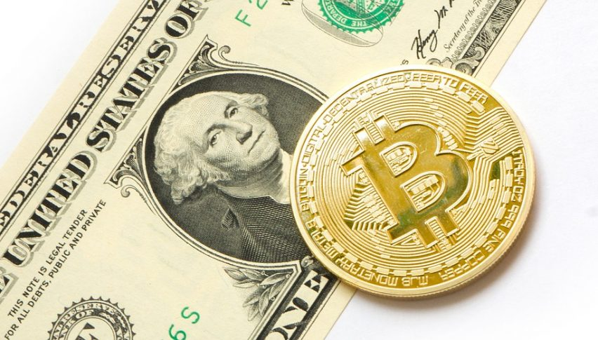 Strangely, Bitcoin and the USD have been going the same path in the last month