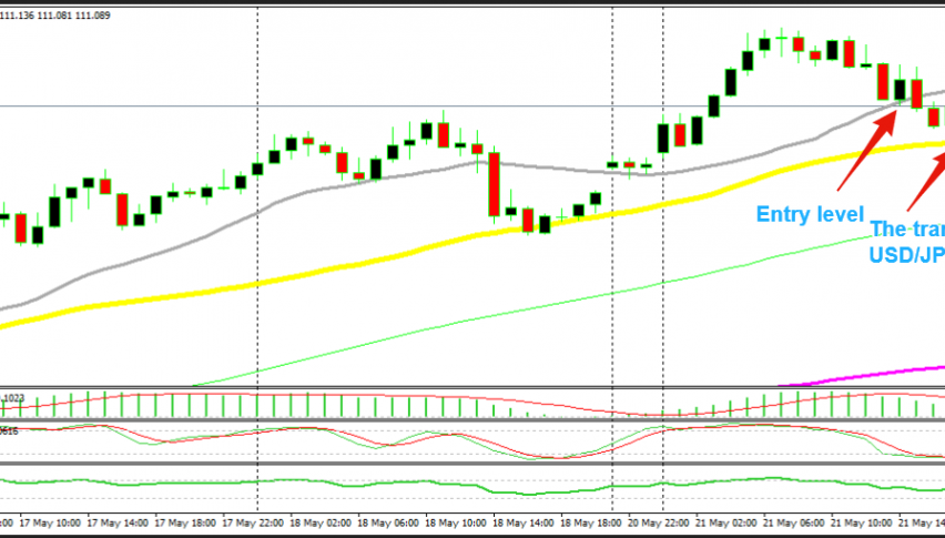 We went long at the 20 SMA, the sellers targeted the 50 SMA