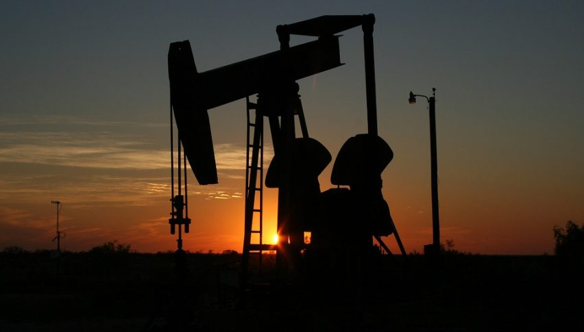 Oil continues to fall as OPEC aims at pumping day and night
