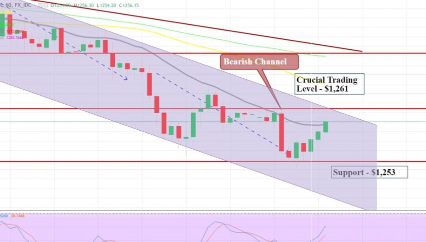 Gold Hourly Chart - Bearish Channel
