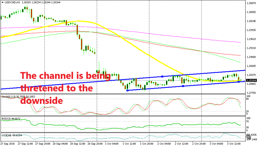 The 50 SMA has turned into strong support now