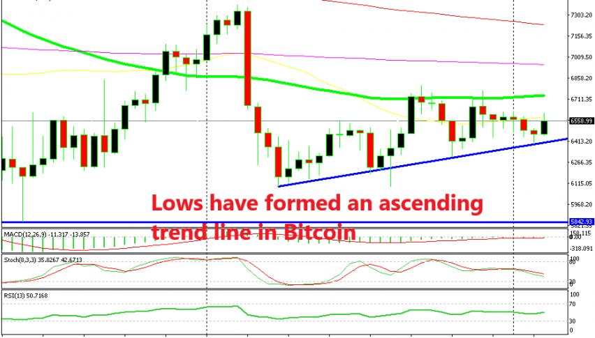 Yesterday's candlestick pointed to a bullish reversal