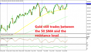 Another bounce from the 50 SMA in Gold