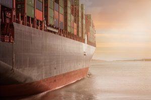 Trade War Worries