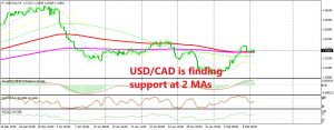 USD/CAD is trying to reverse the bearish trend