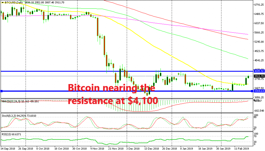 Bitcoin is becoming overbought on the daily chart