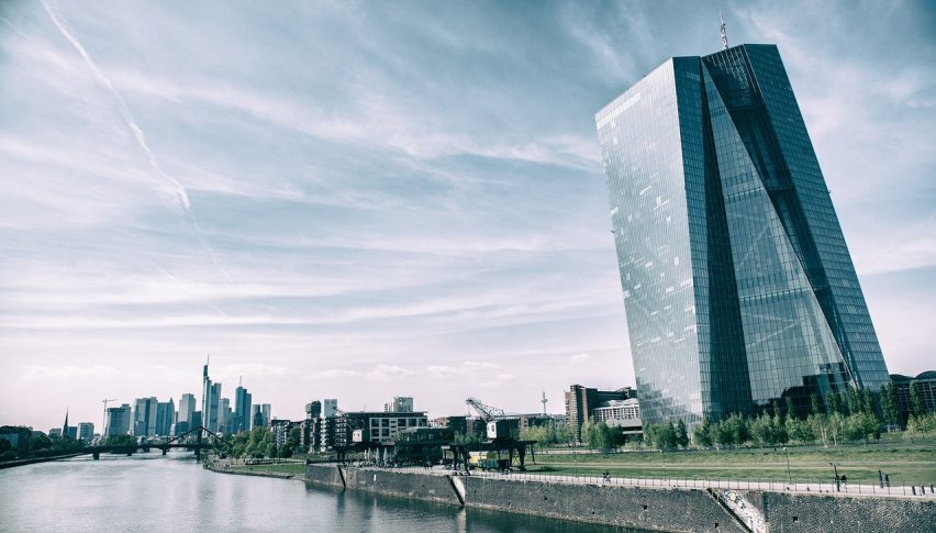 The ECB in Focus