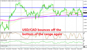 The support held once again for USD/CAD