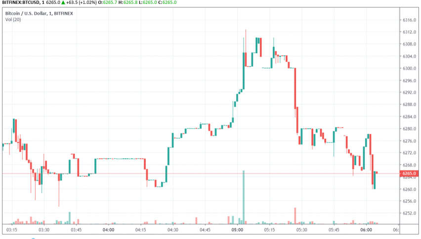 Bitcoin Continues to Hold Above $6,000 Unaffected by Hacking