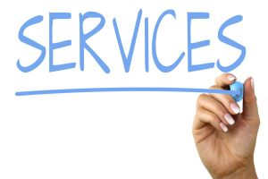 Services sector in focus