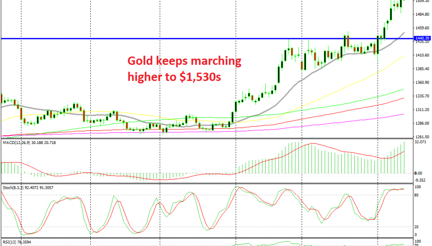 There's no stopping for Gold now