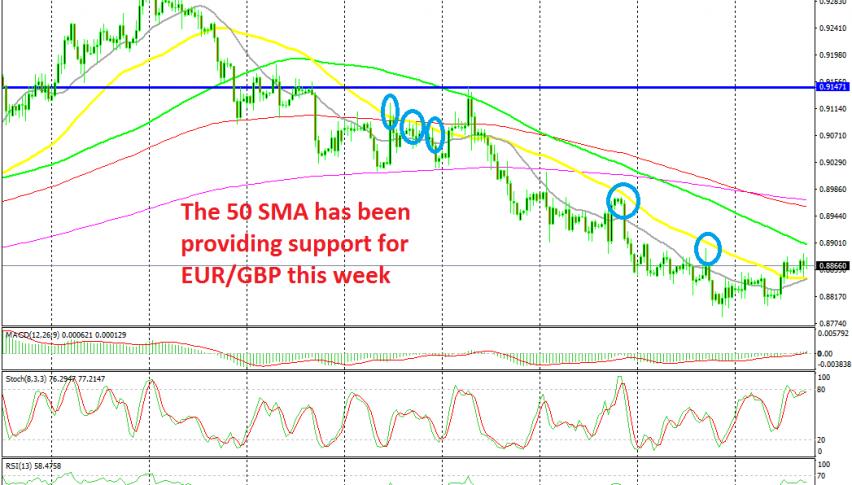 EUR/GBP has turned bullish this week