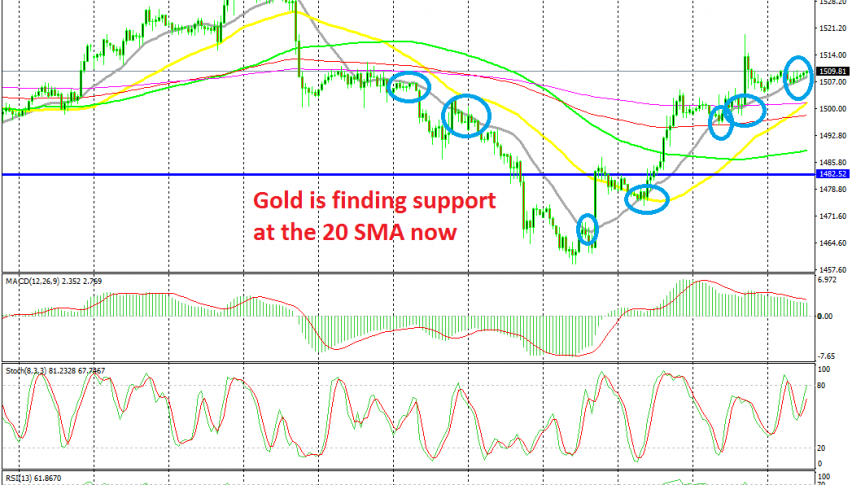 The trend has shifted to bullish again for Gold