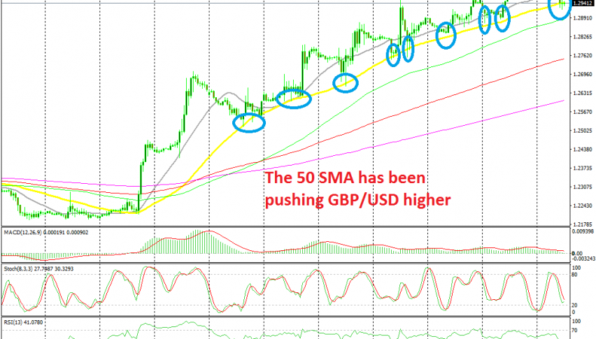 Let's see if the price will bounce again off the 50 SMA