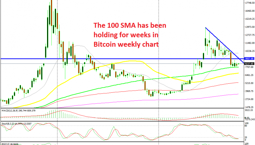 The 50 SMA has been providing solid support