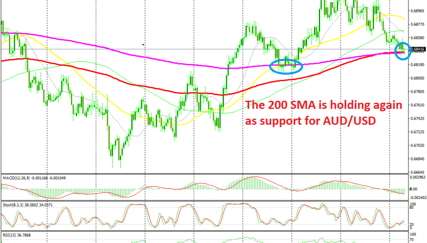 Let's see if sellers will have enough strength to break the MAs