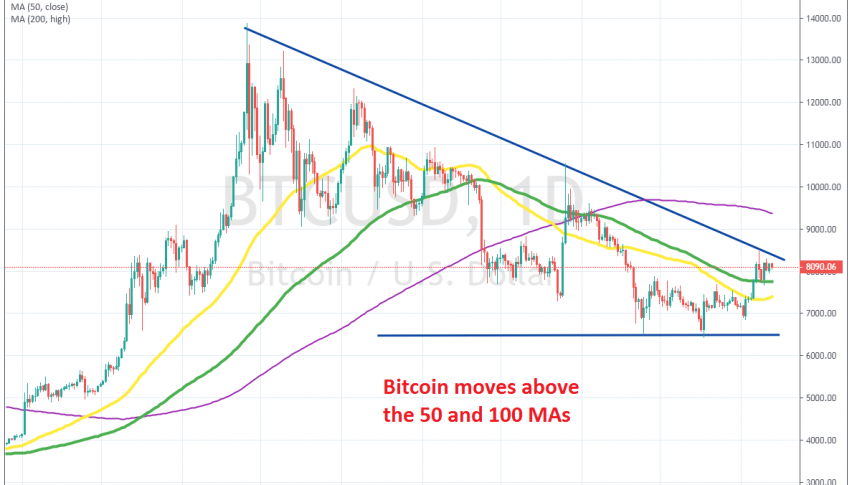 Bitcoin is trying to turn bullish now