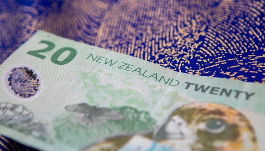 NZ Government Confident of Managing Coronavirus Impact on its Economy