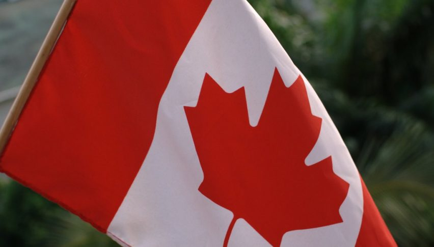 Coronavirus and its Impact on the Canadian Economy