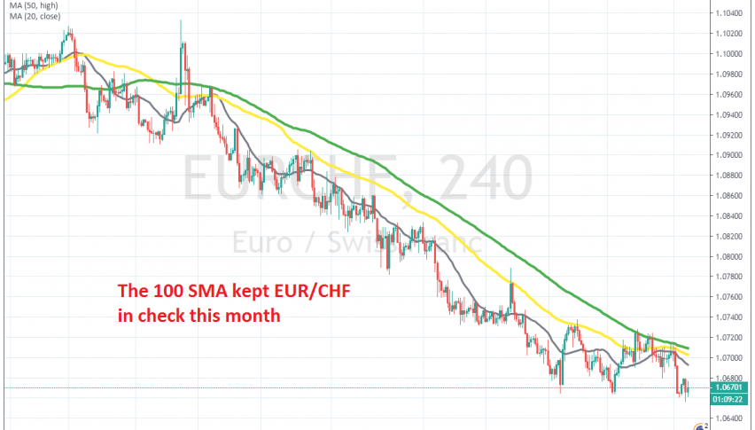 The 100 SMA rejected the price yesterday