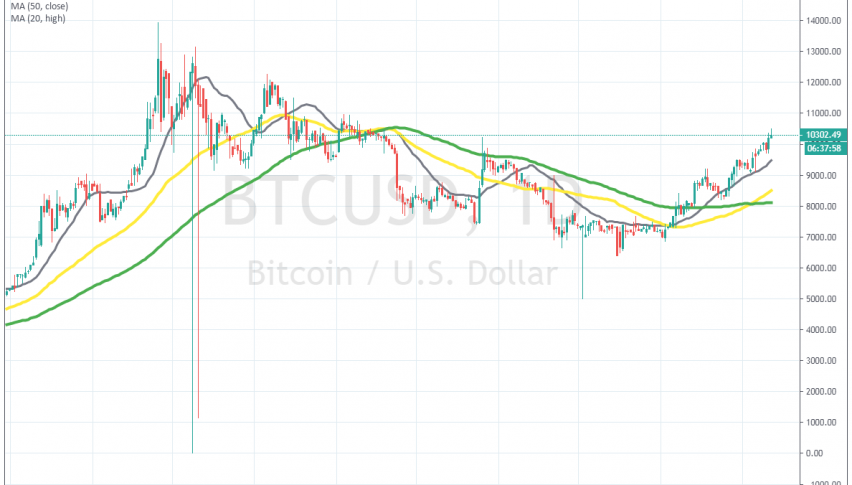 The 20 SMA keeps pushing Bitcoin higher on the daily chart