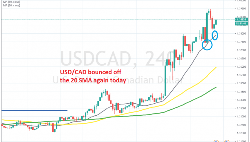 The 20 SMA is pushing the price higher on the H4 chart