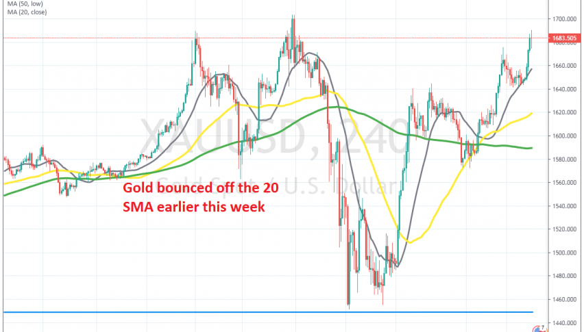 Buyers remain in control in Gold