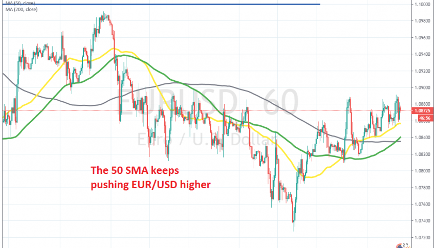 This week's bullish trend continues