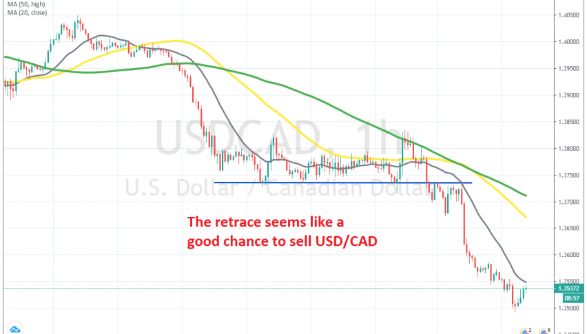 The trend is still bullish on the H1 chart
