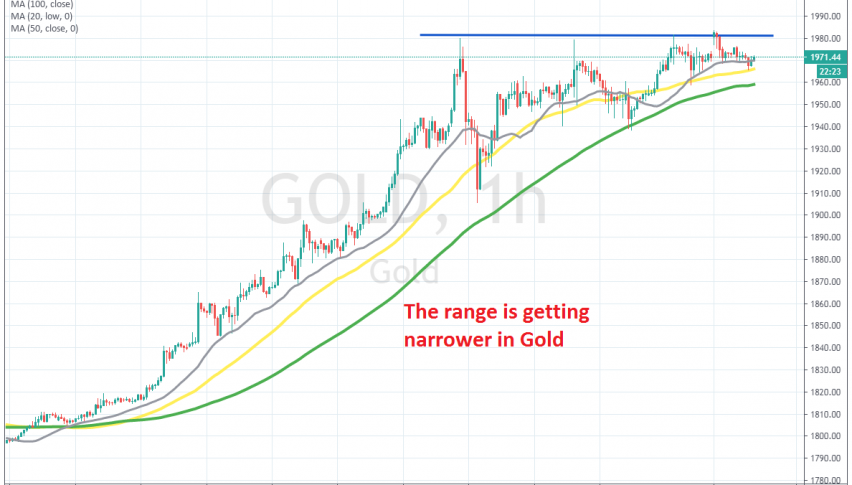 A wedge is forming in Gold
