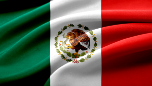 Mexico's Economy to Take Years to Return to Pre-Pandemic Levels: IMF