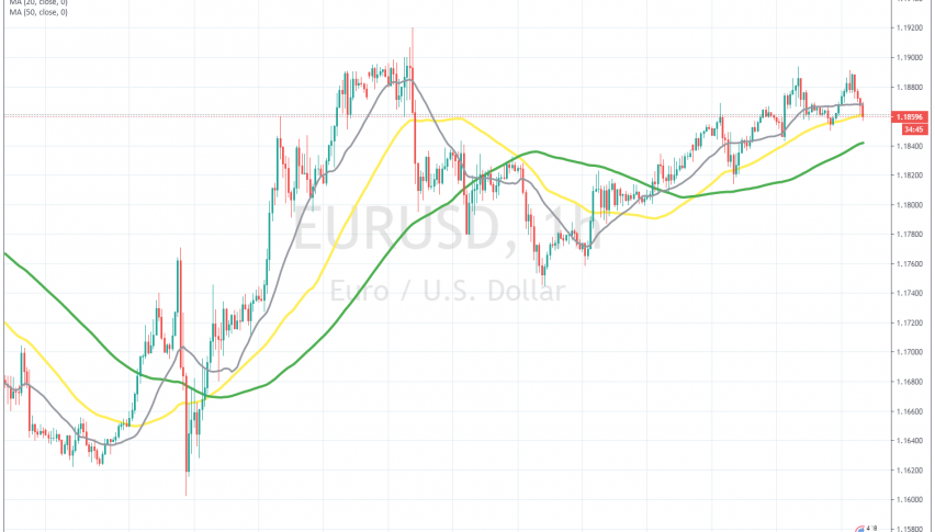 The 50 SMA is holding as support again today