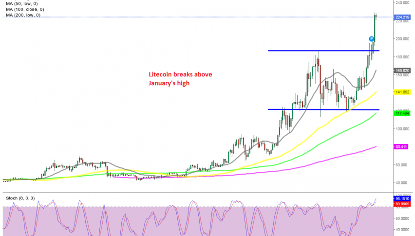 The bullish trend resumed as soon as the 50 SMA caught up