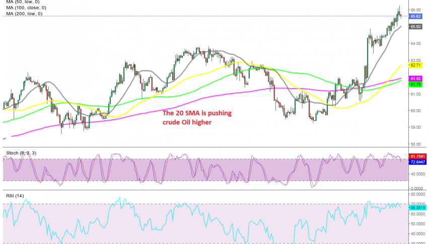 Oil continues the bullish run