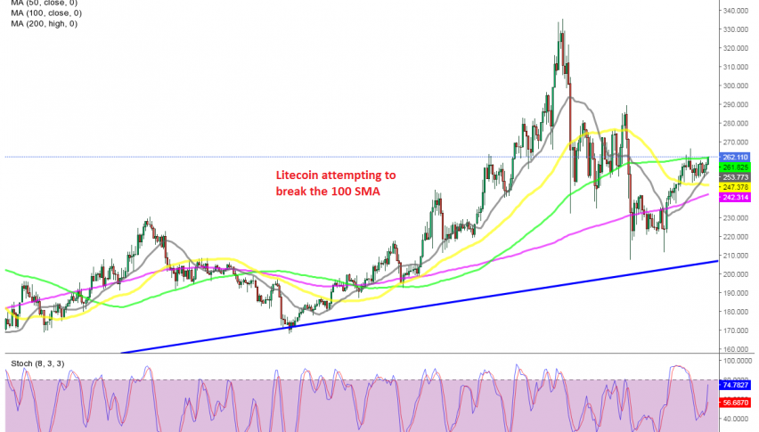 Buyers are in charge in LTC/USD now