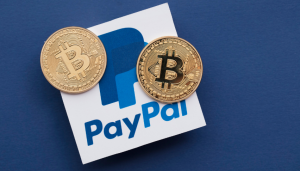 PayPal's Q1 Earnings Call Reported a Positive Result on Crypto Initiatives