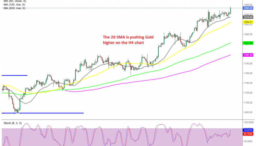MAs are keeping Gold well supported
