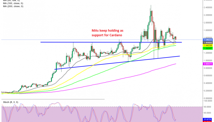 The bounce off the support area will come at dome points for ADA/USD