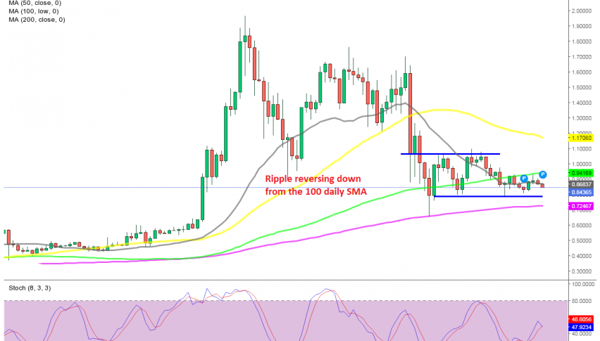 Ripple coin heading for the support after the failure at the 100 SMA