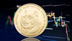 Dogecoin and Shiba Inu coin don't look too bearish now