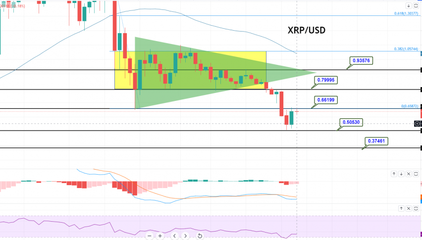 Ripple - XRP/USD Chart