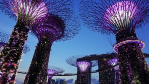 Singapore's Economy Contracts in Q2 as COVID-19 Restrictions Weigh