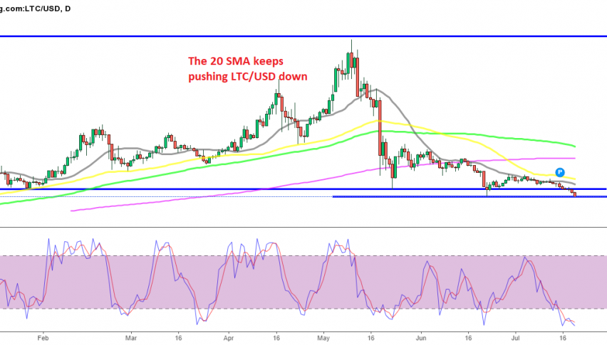 Will Litecoin bounce off the $100 level?