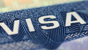 Visa invests $150,000 in NFT by purchasing