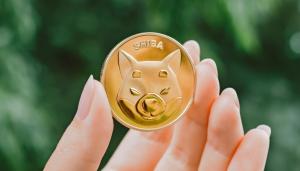 Shiba Inu and Dogecoin feeling vulnerable again