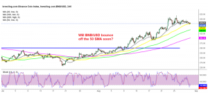 Binance coin about to resume the bullish trend again?