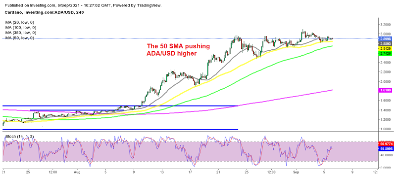 The uptrend is expected to continue further for Cardano